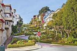 lombard street in San Fransisco
